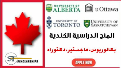 scholarships for international students